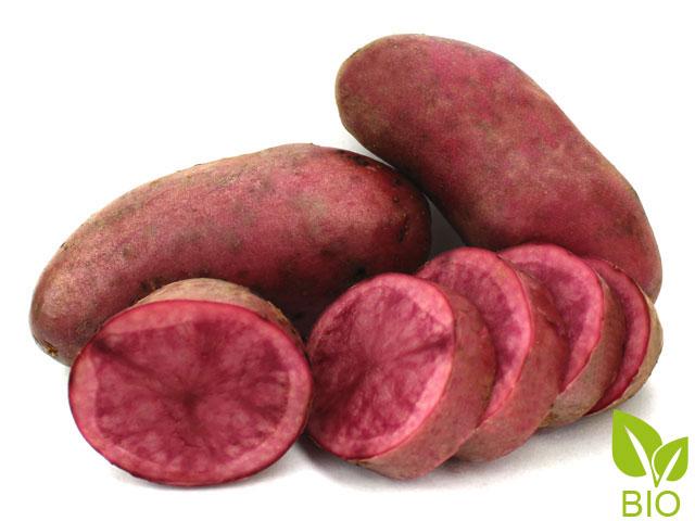 Bio Pflanzkartoffeln Red Emmalie Rote Emmalie Kartoffelvielfaltde